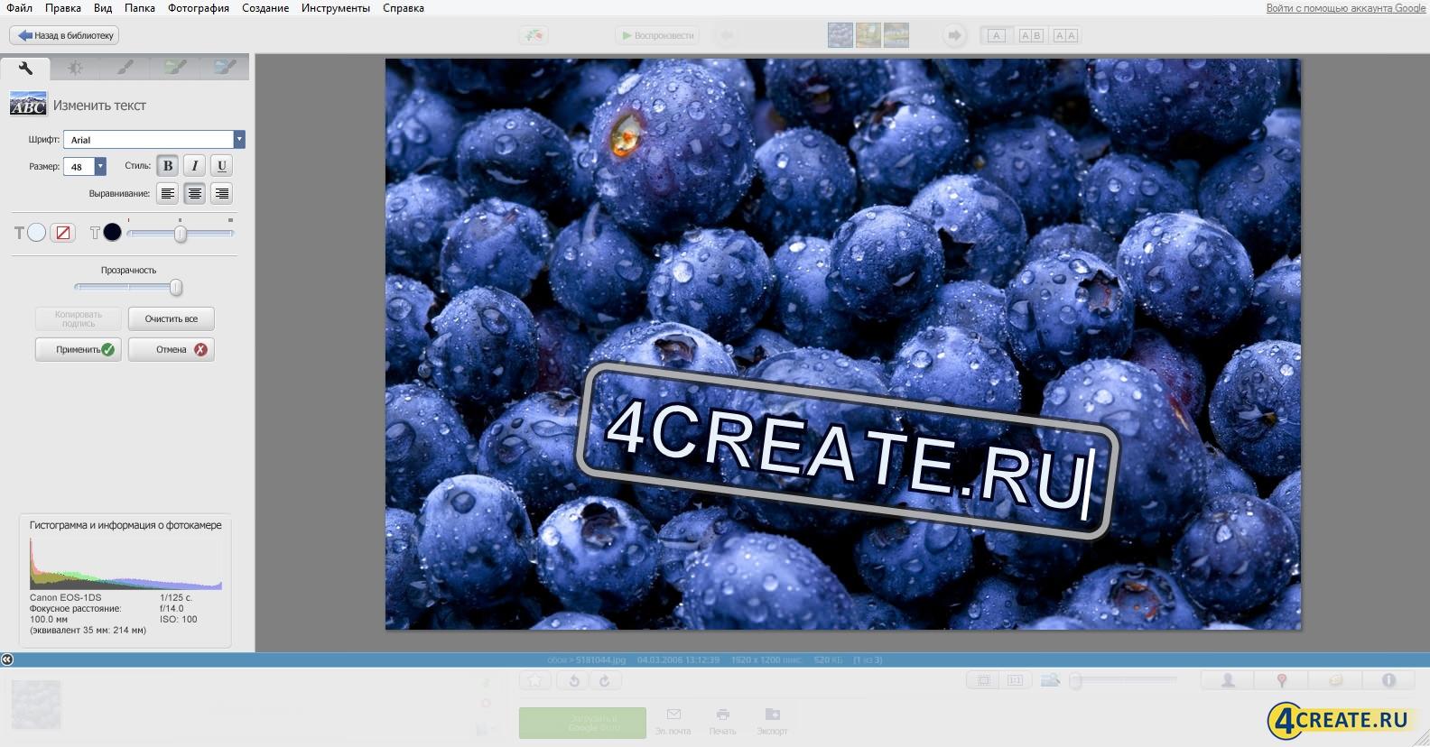 Picasa 3.9 (Скриншот 1)