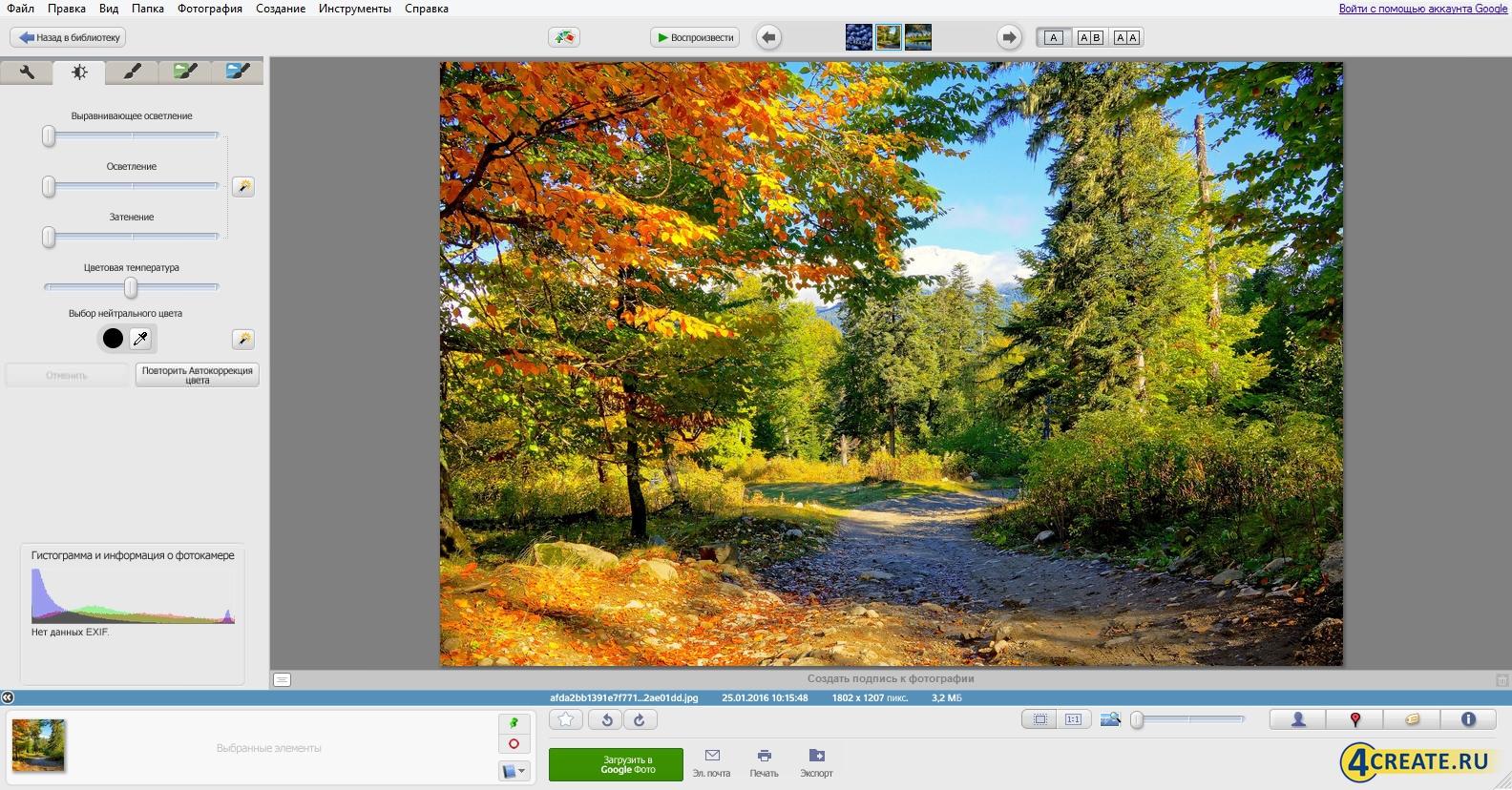 Picasa 3.9 (Скриншот 2)
