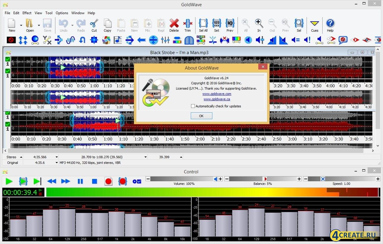 GoldWave 6.24 (Скриншот 1)